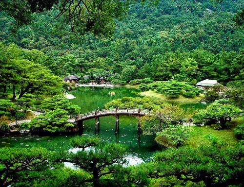 ZEN – La via buddista verso la scoperta di se stessi (The Buddhist way toward self-discovery)