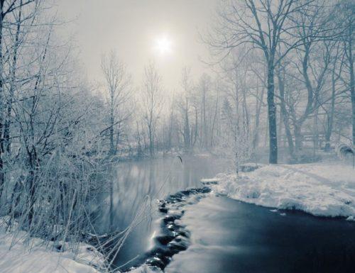 OMBRE E COLORI (Shadows and Fog) – Woody Allen